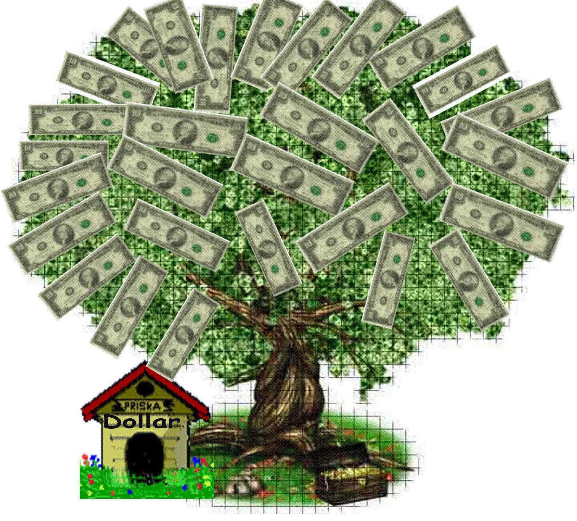 money tree5 I Wasted Almost $50,000 on a False Ex Gay Cure