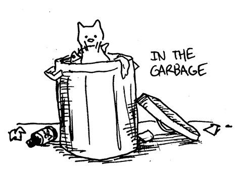 Kittygarbage Emily K Kesselman Draws Cats