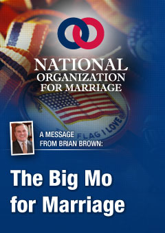 big mo NOMs Brian Brown Is A Big Mo For Marriage
