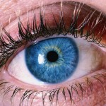 blue eye 150x150 New Study: Pupil Dilation Reveals Sexual Orientation