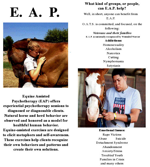 Horse brochure Cowboy Church Dust up Over Horse Therapy Story