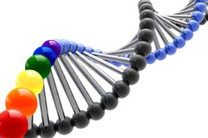 gay gene TWO Applauds New Study Confirming a Genetic Link to Sexual Orientation