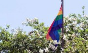 Gay Pride Flag In Louisiana Sparks Outcry From Two Cranky Men