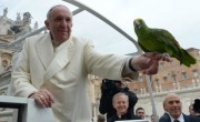 Pope Francis Blesses Parrot Of Former Male Stripper