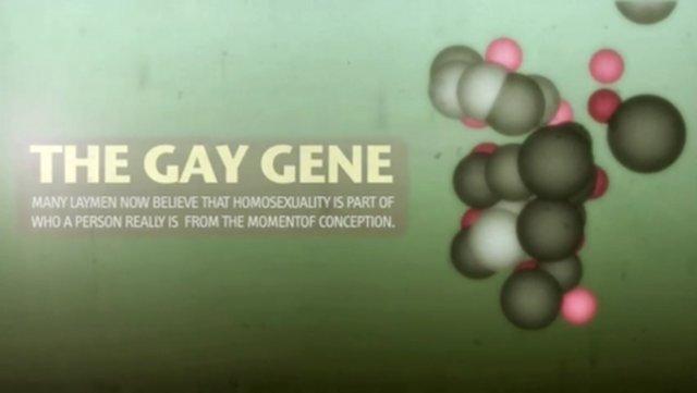 Is Being Gay Genetic 48