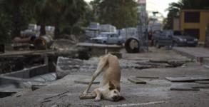 (Maxim Shemetov / Reuters)